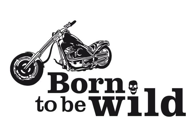 rock and roll y motos